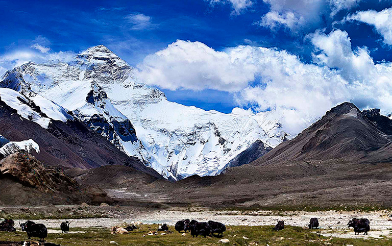 Tibet Discovery Tour plus Mount Everest Expedition