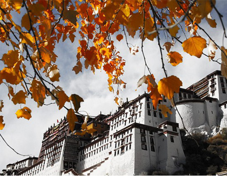 Potala Palace in Autumn