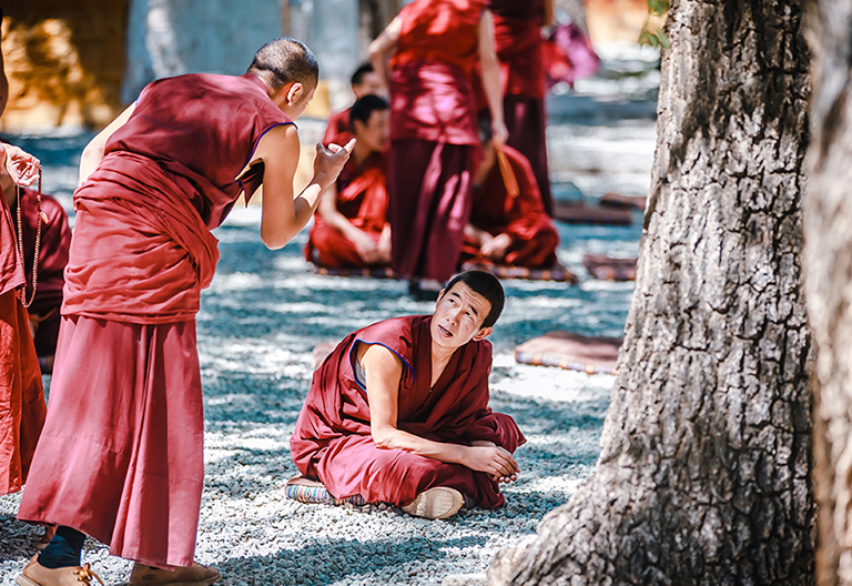 Enjoy the scripture debate in the Sera Monastery