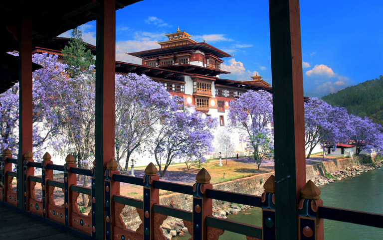 Punakha Dzong - Most Beautiful Dzong in Bhutan