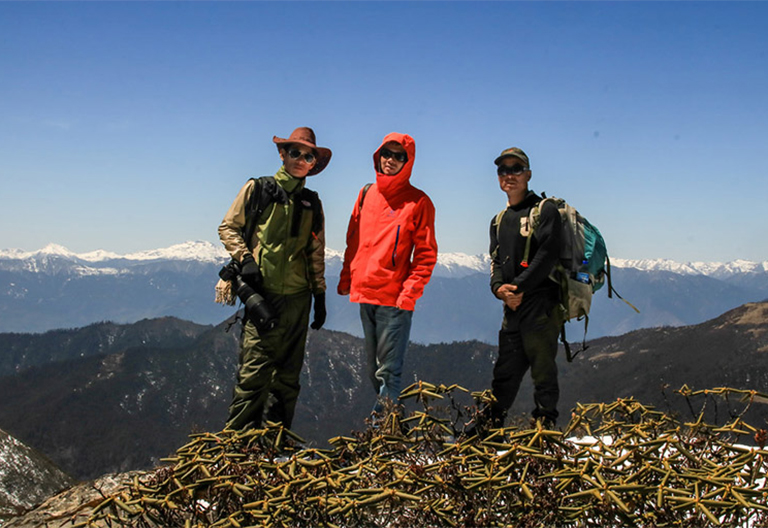 Trekking guide with trekkers