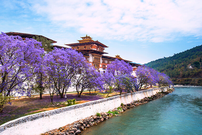 Best Time to Visit Punakha Dzong