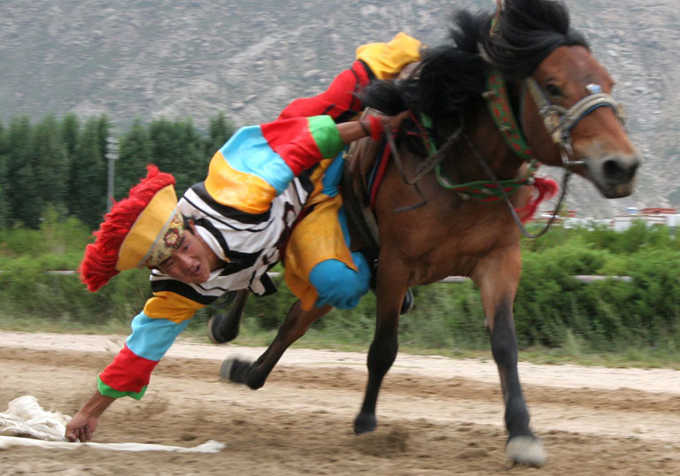 Horse Racing Festival