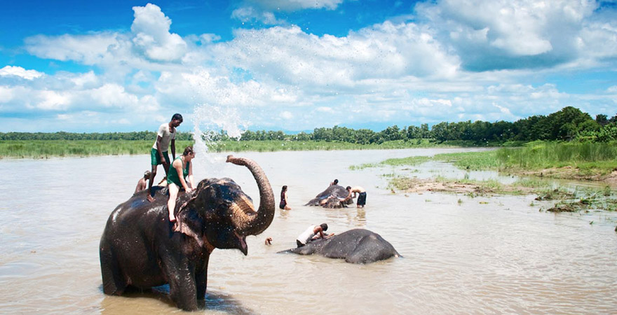 Spending a happy time with the elephants in Chitwan National Park.