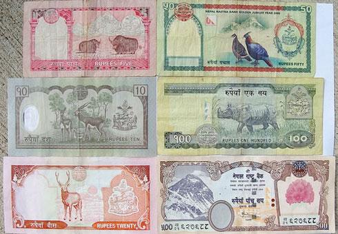 Currency exchange rate nepal usd, tips bermain forex