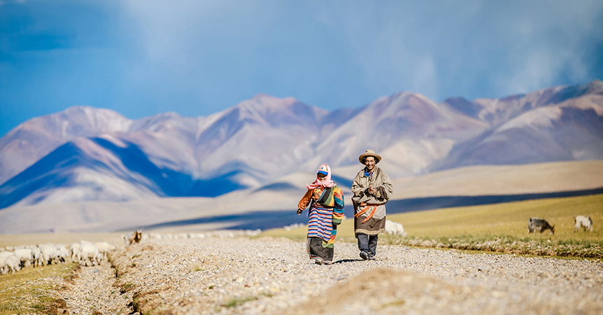 We arrange everything you will need to make your dream trip happen! On our tours in Tibet, we arrange guides, Land Cruisers, drivers, luggage transfers, accommodations, and local meals. You just need to pack your bags - we've got the rest covered !