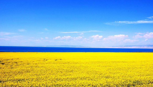 Qinghai Lake Getting Larger for 7 Years